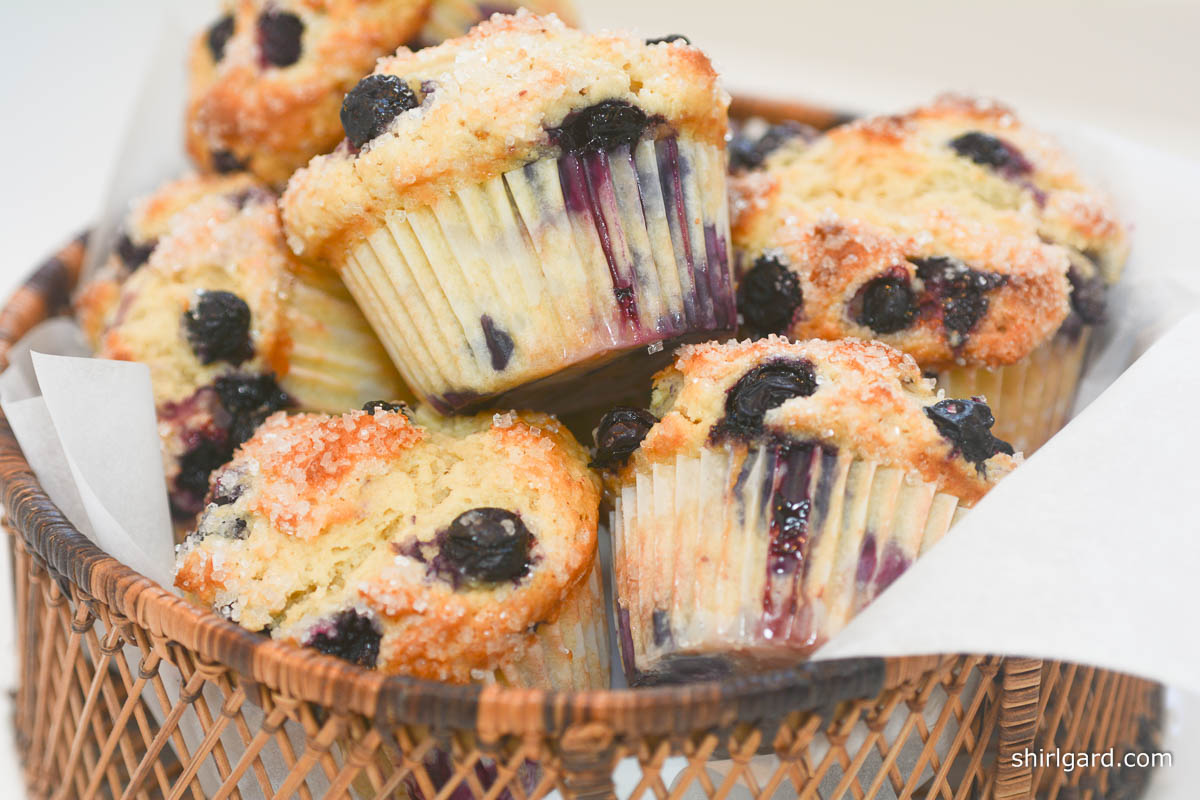"""Basket of """"Blueberry Muffins Shirl"""": For the Porch"""