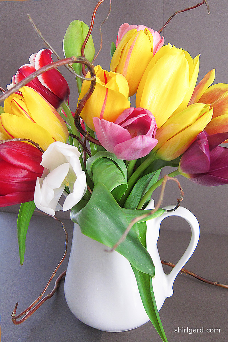 A Pitcher of Tulips for Mom