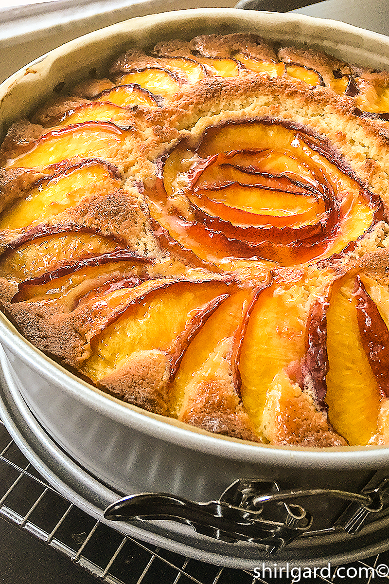 Nectarine Almond Cake just out of the oven.